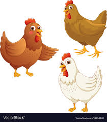 cartoon images of chickens. Exellent Images Cartoon Chickens Vector Image In Images Of Chickens VectorStock