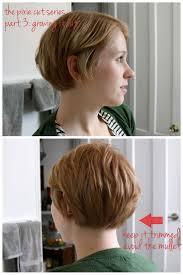 Growing Out Hair Style 26 best growing out a pixie cut images hairstyles 1432 by stevesalt.us