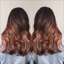 Copper Brown Hair Color Chart Hairstyles Copper Hair Color Pretty Copper Brown Hair