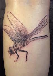Tetování 50 Dragonfly Pro ženy Punditschoolnet