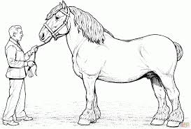 Small Picture Coloring Pages Clydesdale Horse Coloring Page Free Printable