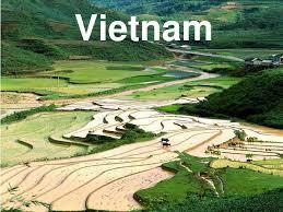 war essay thesis vietnam war essay thesis