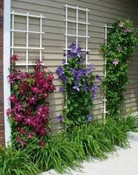 Diy Wall Garden Trellis Decor. Terrace and Garden: Cool Window Trellis  Crafts - Garden Trellis