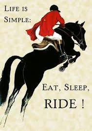 Horse Shipping Quotes Delectable Oh If Life Was Only This Simple Horses Pinterest
