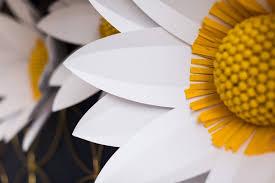 Daisy Paper Flower Diy Giant Paper Daisies Cricut