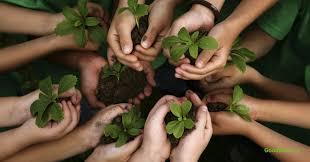 Environmental Jobs Green Jobs Conservation Jobs Goodwork Ca