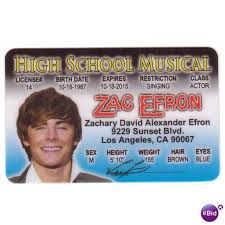 High Realistic Musical United Ebid States License 64092128 Drivers Zac School Efron Halloween Ur For Costume On