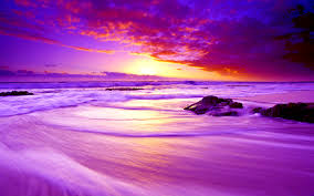 Image result for pictures of paradise
