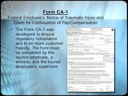 Explanation Of Form Ca-1 You Must Click Your Mouse, Press Enter, Or ...