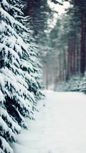 snow iphone 6 wallpaper.  Snow Snow And Trees IPhone 6 Wallpaper To Iphone H