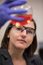 femtosecond chemistry. amy cordones-hahn femtosecond chemistry