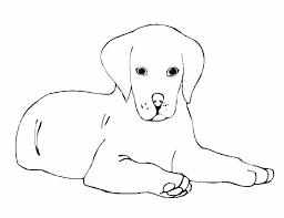 Disegni Cani 5 Disegni Per Bambini Da Stampare E Colorare By