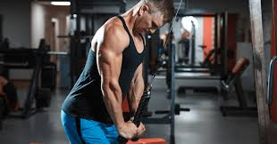 long head tricep exercises for big arms