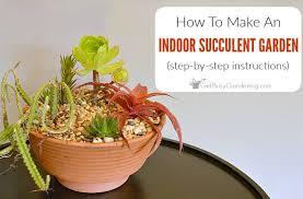 how to make an indoor succulent garden