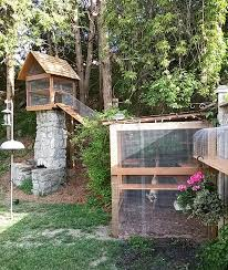 two cat jungle gym structures connected with a tunnel for bird watching