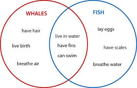 compare and contrast essay writing great tips the writing center at unc chapel hill suggests the use of a venn diagram to aid you in determining what the two things or ideas have in common and what is