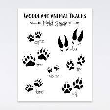 Torass canvas wall art print kids animal track nursery woodland room artwork for home decor 12 x 16 2.9 out of 5 stars 26. Amazon Com Woodland Animal Themed Baby Nursery Wall Art Animal Tracks 8x10 Room Decor Prints Handmade