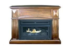 electric log fireplace insert propane gas log fireplace inserts inert review gas log fireplace inserts electric