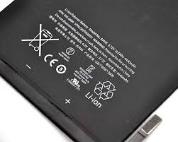 TANAKA Replacement Battery Compatible Apple iPad Mini 1 1st ...