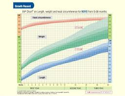 12 Chart For Baby Boys To 36 Months For Head Circumferences