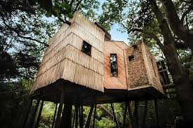 Luxury Secluded Acorn Treehouse In Devon Costs £200 A Night Treehouse Lake District