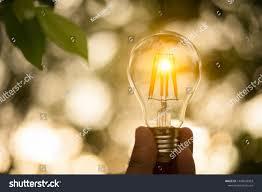 New Leaf Light Bulbs Hand Holding Light Bulb Save Energy Stock Photo Edit Now