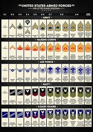 United States Armed Forces Enlisted Rank Insignia Art
