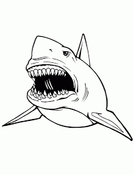 Small Picture Printable Shark PicturesSharkPrintable Coloring Pages Free Download
