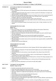 Telemarketing Resumes Telemarketing Manager Resume Samples Velvet Jobs