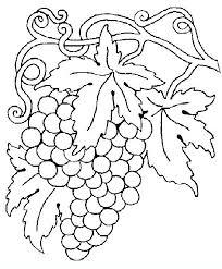 Disegno Girasole Stilizzato