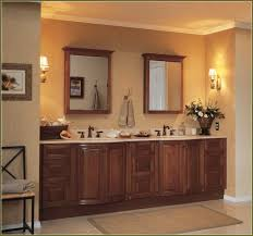 Medicine Cabinets Without Mirrors Hotel Wall Mounted Cabinet Intended Ideas
