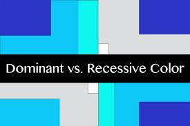 Understanding Color Dominant Vs Recessive Colors Design