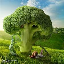 Worth1000 Home | Superfoods, Heart healthy, Broccoli
