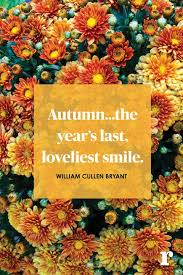 Fall Quotes Mesmerizing 48 Fall Quotes Quotes About Fall