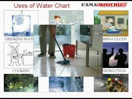 Uses Of Water Chart