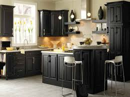 Image Oak Cabinets The War Against Outdoor Kitchen Design Ideas The Upside To Best Black Paint For Kitchen Cabinets The