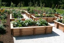 Small Picture Stunning Wood For Raised Vegetable Garden 17 Best Ideas About