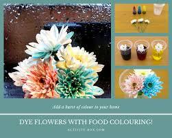 dye flowers activitybox diy activity