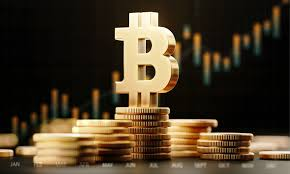 It is believed the twins own nearly 1% of all bitcoins. Purpose Investments Cleared To Launch World S First Bitcoin Etf Wealth Professional