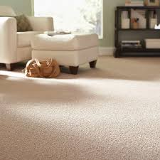 carpet carpet tile