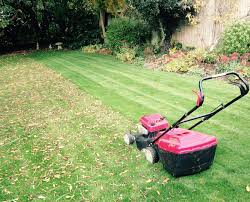 professional lawn care in milton keynes