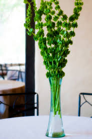 Tall centerpiece of whimsical green bells of ireland in a recycled glass  vase with a layered