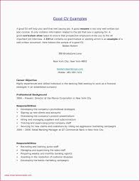 How To Write A Good Cover Letter For A Job Sample Cover Letter New