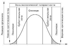 Реферат Экологические факторы среды com Банк  Экологические факторы среды