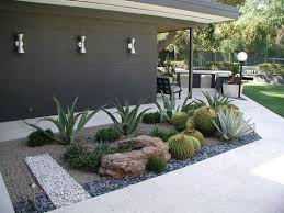 this is my idea of great landscaping. Sculptural shapes of the plants and  rocks,