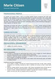 Professional Membership On Resumes Public Service Senior Executive Resume Public Service Resume Writers