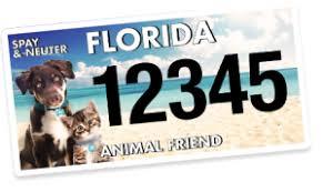 Help Florida's Population – Friend Pet Animal