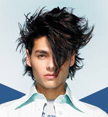 Crazy Woman Hair Style crazy hairstyles for men crazy men hairstyles latest men hairstyle 5950 by wearticles.com