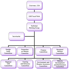 Organizational Chart For Daycare Center Organizational Structure