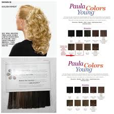 Paula Young Exclusive Color Chart Paula Young Long Curly Textured Light Golden Brown Clip In Comb Ponytail